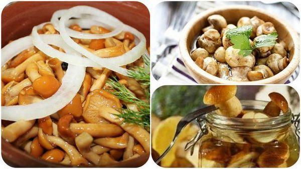 Recept na chutné marinované huby