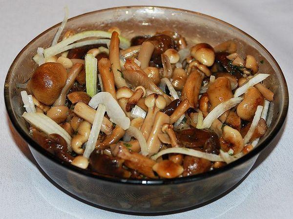 Ako chutné marinované huby