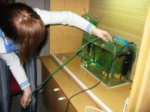 Ako čistiť akvárium