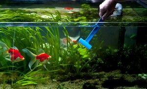 Metódy čistenia akvária