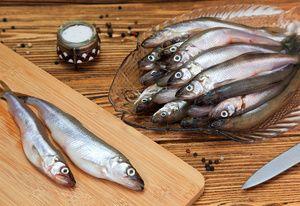 Vlastnosti rybolovu