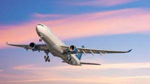 Hlavné odpovede rôznych snov kníh na otázku: o čom sníva lietadlo?