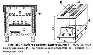 Aké sú požiadavky na inkubátor z chladničky