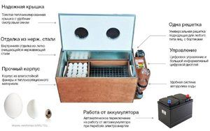 Ako používať inkubátor