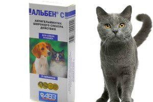 Pokyny na použitie lieku Alben pre psov a mačky