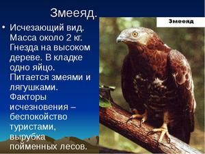 Miznúce a vyhynuté druhy zvierat