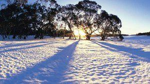 Čo sníša sneh - verzie rôznych snov