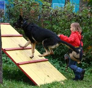 Dieťa trénuje psa