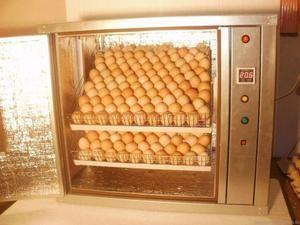 Ako urobiť inkubátor správne