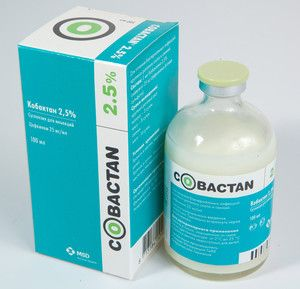 Kobaktan. Návod na použitie pre mačky