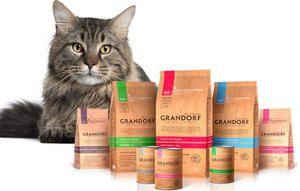 Aké sú zvláštnosti krmiva pre mačky?