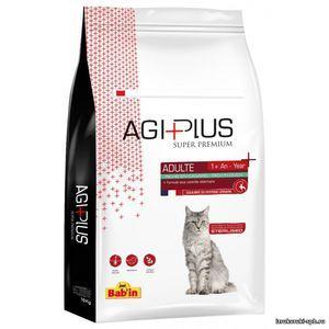 Výber krmiva pre mačky