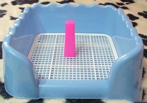Zásobník so stĺpcom - pohodlné riešenie pre psa