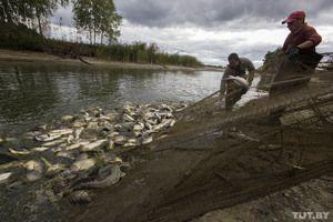 Rybolov na cibuľovom jazere