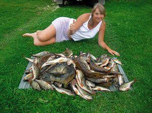 Aké sú rybníky na rybolov