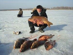 Aký dobrý je rybolov v regióne Sverdlovsk