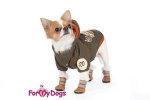 Topánky pre malé psy: funkcie