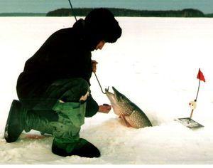 Ako si vybrať miesto pre rybolov