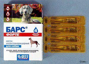 Indikácie pre použitie kvapiek leoparda pre psov