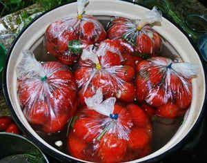 Ľahko solené paradajky v balení: varenie