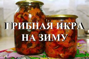 Recepty na varenie húb húb na zimu
