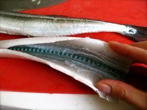 Rybia ihla - zelené kosti