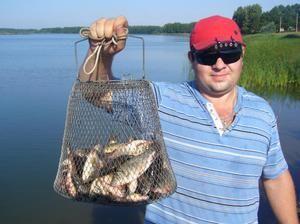 Druhy rýb vo vode