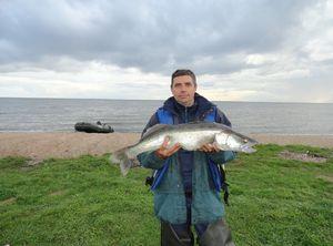 Rybolov v Ulyanovsk