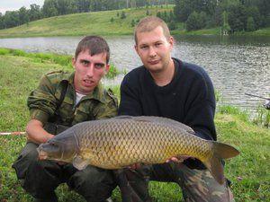 Ryby v meste Sviyaga