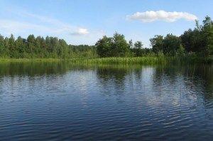 Jazero Krasnodvorskoe oblasť Viciebsk