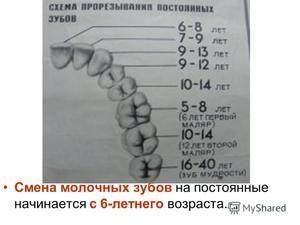 Zmena zubov u dieťaťa: tipy a poradie straty zubov
