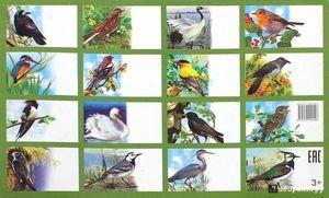 Zoznam vtákov na území Ruska