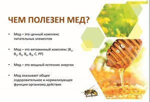 Kde sa použije včelí jed