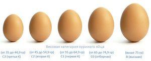 Kuracie vajcia rôznych kategórií