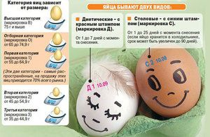 Čo znamenajú kategórie kuracích vajec?