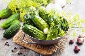 Vynikajúce krehké ľahko slané uhorky: recepty na rýchle varenie