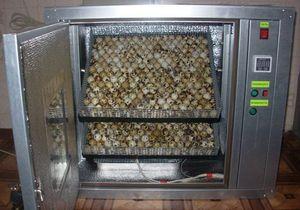 Šrafovanie prepelíc v automatickom inkubátore